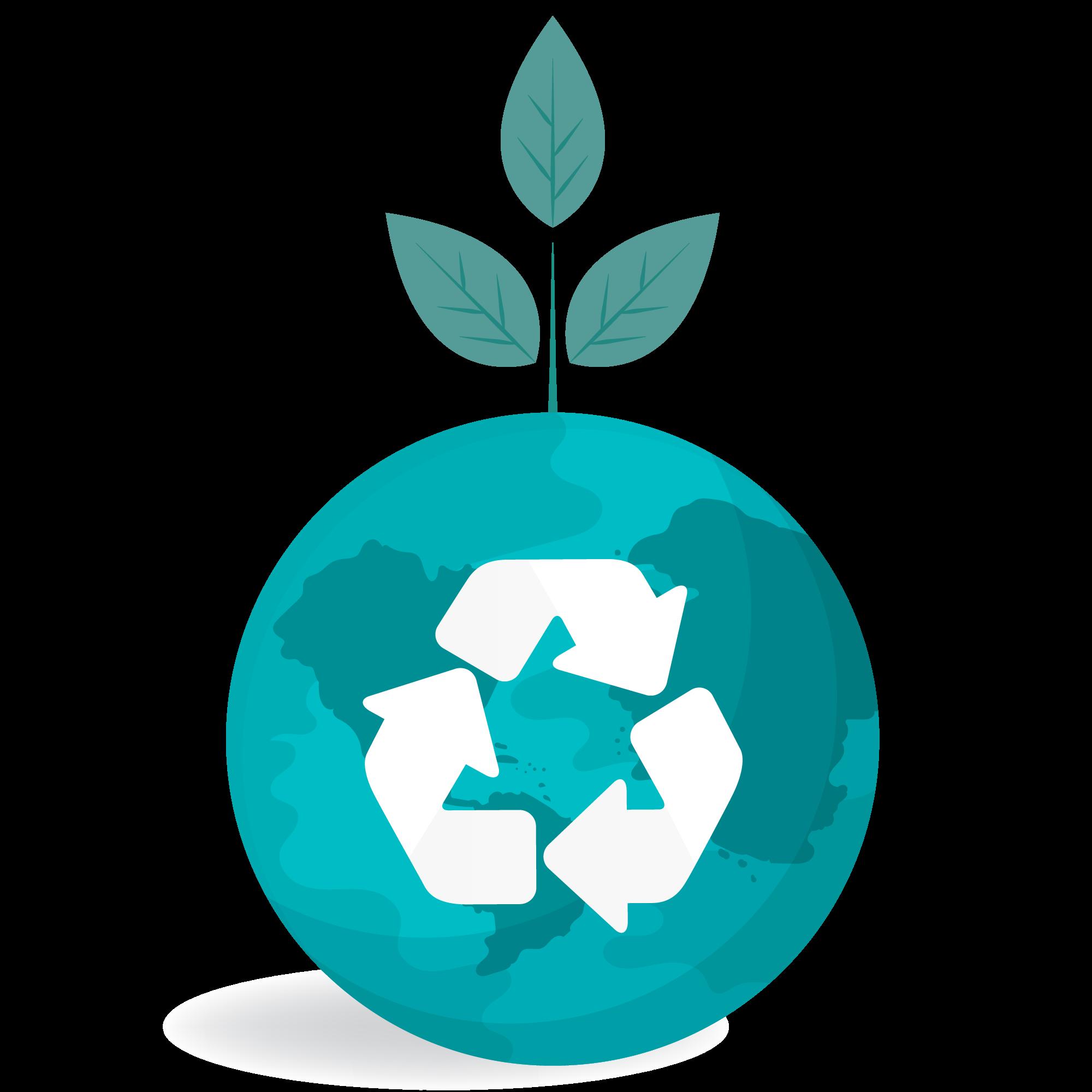 Reciclarea este un proces inclus in training-ul pentru educatie ecologica.